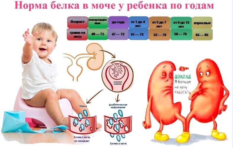у ребенка повышен холестерин что это значит