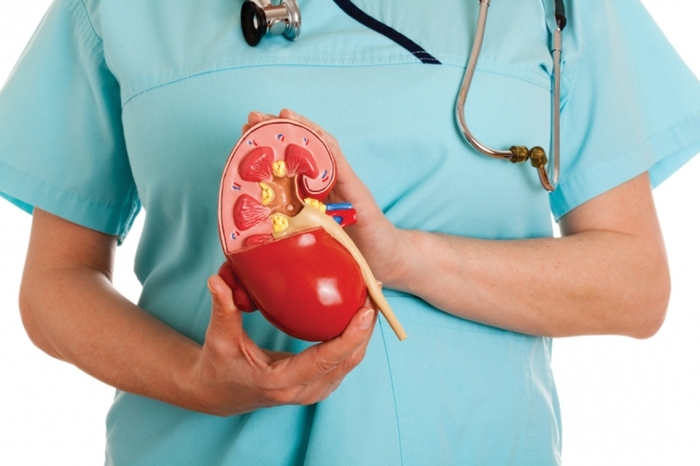 Антибиотики в урологии при пиелонефрите