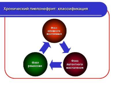 фазы пиелонефрита