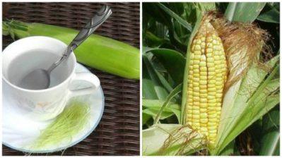 настой из кукурузных рыльцев