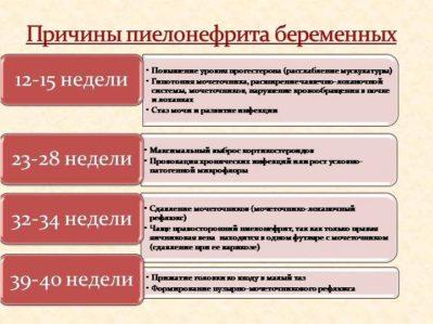 причины пиелонефрита при беременности