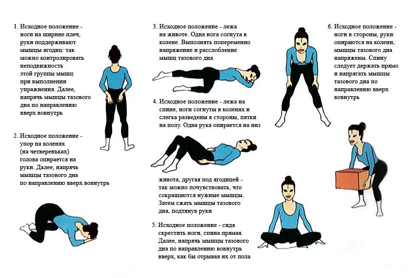 гимнастика для укрепления передней стенки влагалища-фн1